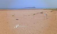 Diputación Foral de Bizkaia -Paisajes-